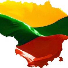 Su Lietuvos valstybės diena !